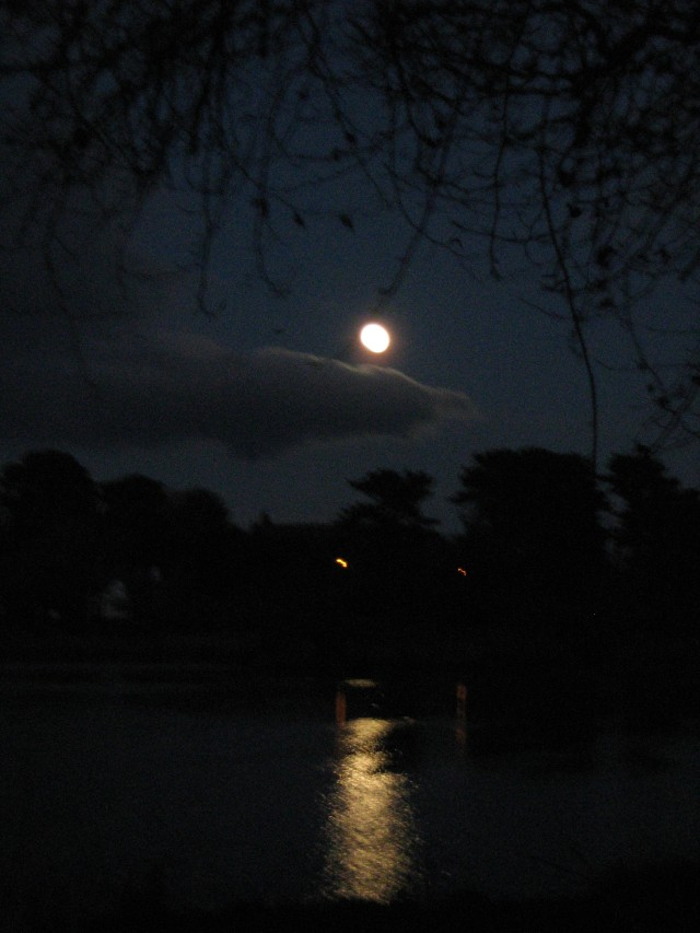 full moon november 2010